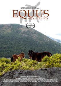 Equus Ferus Atlanticus